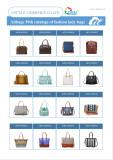 Aitbags 39th Catalogs of Fashion Lady Bag-3