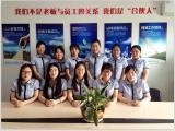 Sales Team-11