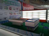 Xuzhou Fair
