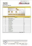 SGS report-P4