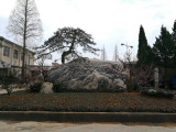 Chinese Rock landscape beside office building