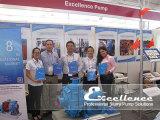 EXTEMIN 2013 in Peru