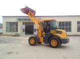 USA customer check the loader