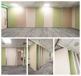 Operable Partition Wall For Call Center in Philippine