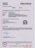 SGS Audit Report 1