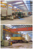 Quartz stone manufacturing line 2