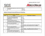 SGS Report - 7