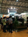2014 Shanghai Expo.