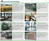 Advanced Plywood Technology