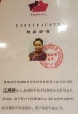 Chairman of chamber of cheongsam of China economic association