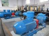 RSP Twin-screw Pump for Bitumen