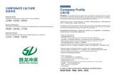 Corporation Culture & Company Profile