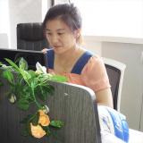 Sales Department--Jessica Tang