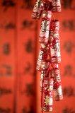 Celebrate Chinese Spring Festival