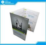 Flyer/leaflet/pamphlet printing
