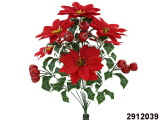 Poinsettia, Apple Bush