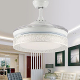 Fan light led lights