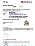 SGS auditing report