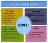 Our SWOT Analysis Reports