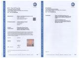CE class IIb --Luke Medical