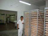 Bolivia customer