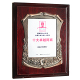 Ten outstanding network operators of hardware industry in China(2012)