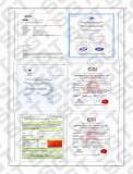 SGT Certificate