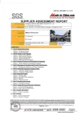 SGS Assessment Report (2 in 17 pages)