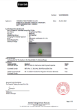 ITS -EN71 TEST REPORT OF ANIMAL COVER FROM
