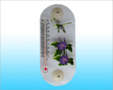 Plastic Thermometers (PS022)