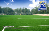 FIFA Recommened Artificial Turf for football court