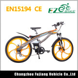 Very Fast and Fashionable City Electric Bike for EU Market