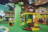 Jungle indoor playground