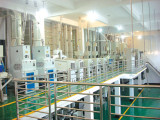 our120 tons /d rice processing equipment in HuNan
