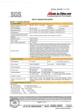 SGS Assessment Report(3 in 17 pages)