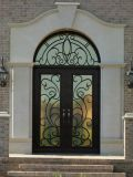 wrought iron entry door with transom