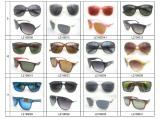 Best Selling Plastic Sunglasses-2
