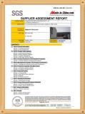 SGS Supplier Assessment Report