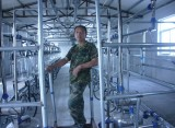 Glass Milk Meter Milking System Installed in Taizhou