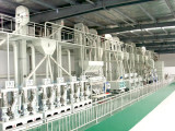 Our200 tons /d rice processing equipment in hubei