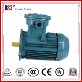 AC Three Phase Explosion-Proof Electric Motor