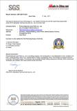 SGS Audit Report