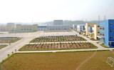 Xuping Factory