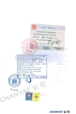 License Certification (Egypt Office)3