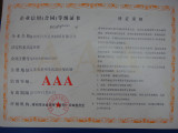 Enterprize′s credit rating certificate