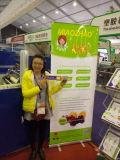 Chinaplas fair show