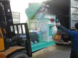 Spain 10t/h wood pellet line delivery
