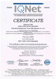 Dingchang Certificate of ISO141000