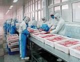 Frozen Food Production