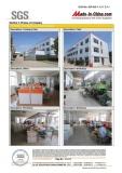 SGS Report -12